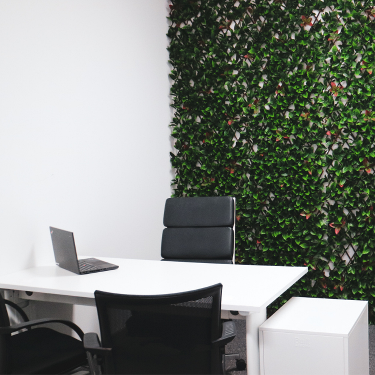 Green Wall Office Hire East Brisbane